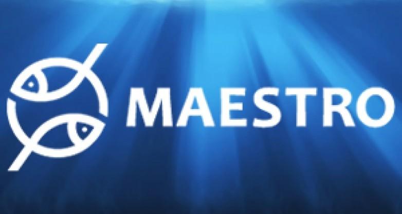 Товары для рыбалки Maestro